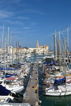 Trani, Bari, Apulia, Italy