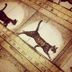 bomoart cats