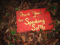 Thank you for speaking softly.