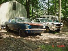 2 1965 Mustang Fastbacks - post rusty muscle car photos and project muscle cars for sale at RustyMuscleCars.com