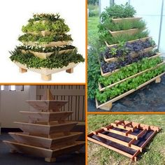 Grow herbs, veggies and flowers with this DIY slot together pyramid planter! Learn how it's made by viewing the full tutorial on our site at http://theownerbuildernetwork.co/wtop Pyramid planters are great for growing various plants especially if you don't have a lot of space in your garden or yard. It's very easy and cheap to make as it's made from recycled pallet timbers. All you need is an hour and a half and some basic woodworking skills.