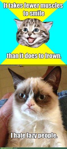 Grumpy Cat hates lazy people