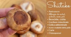 Lo Shiitake è un fungo medicinale che è dimostrato avere molti benefici per la salute: anticancro, allergie, bronchite, cistite, gonfiore intestinale, acne, carie osteoporosi