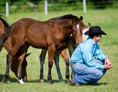 Training Tip of the Week:  Hard-to-catch horse tip: Spend time in the pasture away from the horse.  Clinton Anderson.