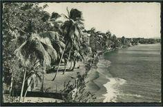 Puerto Rico in the 1800's...WoW ya no vemos tantas Palmas a la orrilla del Mar como en esta foto