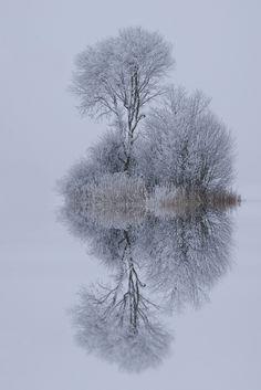 winter stillness - by Norbert Maier