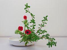 Ecole d'ikebana Ohara La Rochelle / Sud-Ouest - Moribana - Cours et stages d'art floral japonais (ikebana) de l'école Ohara de Tokyo