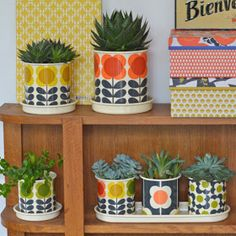Bring life to your home with potted plants! Cacti is an easy option for new plant owners. Add a funky plant pot to spice them up. House Plants Decor, Plant Decor, Botanical Interior, 70s Decor, Pot Jardin, Colourful Living Room, Rustic Wall Art, Orla Kiely, Plant Design