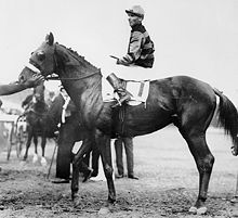Sir Barton, the first Triple Crown winner, at the 1919 Preakness Stakes.