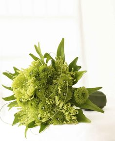 Bridal Bouquets and Wedding Flowers: Green Wedding Bouquet