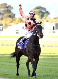 Black Caviar became the first Australian horse in history to be ranked the #1 horse in the world when the World Thoroughbred Rankings were released at the end of March 2011