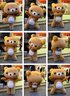 There are no words to describe how happy it makes me to see this! Rilakkuma never fails to put a smile on my face.