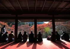 healing been shared from Kyoto, Japan  清水 卓司 写真展
