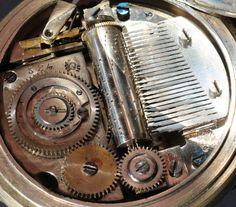 Rolex Watches, Accessories, Nice Watches, Joie De Vivre, Nice Asses, Ornament