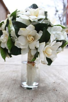 The classic, gorgeous and hypnotically fragrant...Gardenia!!