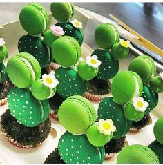 いいね!11.8千件、コメント161件 ― AmourDuCakeさん(@amourducake)のInstagramアカウント: 「Cactus macarons by @adelaidebakes I am fan  #cactus #cactuslover #amourducake #cactusclub…」