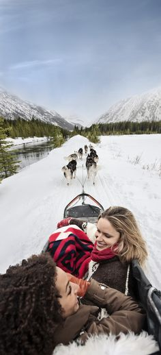 The thrill of dog sledding will leave you eager to write home about your winter adventure. Travel Book Layout, Canadian Winter, World Travel Guide, Maputo, Luxury Camping, Roadside Attractions, Alberta Canada, Rocky Mountains, Travel Pictures