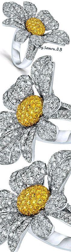Cellini Jewelry Daisy Mae, Bling, Plates, Diamond, Tableware, Silver, Ice, Jewelry, Baby