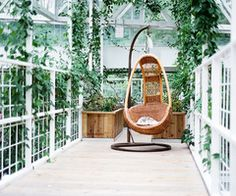 The Hanging Chair of Wonder