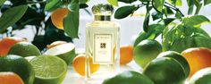 Lime, Basil & Mandarin Cologne, from Jo Malone