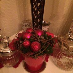 . Burmese, My House, Christmas, Xmas, Navidad, European Burmese, Noel, Natal, Kerst