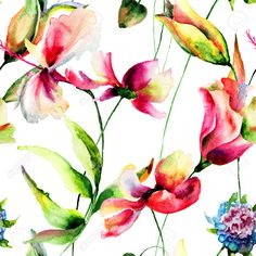 Seamless Pattern With Hibiscus And Cosmea Flowers, Watercolor.. Stock Photo, Picture And Royalty Free Image. Pic 35088158.