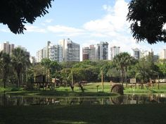 Goiania Zoo - Goiania, Goias