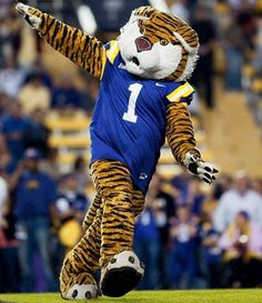 LSU Tigers mascot Mike the Tiger has been roaming the sidelines in Death Valley since the Lsu Tigers Football, Saints Football, College Football, Lsu Mascot, Football Usa, Sports Illustrated Kids, Tiger Stadium, Jersey Maxi Skirts, Team Mascots
