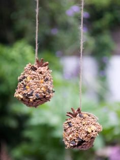 Hang Bird Feeder Pine Cones from Tree or Pergola Pine Cone Bird Feeder, Bird Feeder Craft, Bird Feeders, All You Need Is, Autumn Decorating, Decorating Ideas, Craft Ideas, Fun Ideas, Creative Ideas