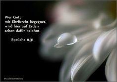 Gott mit Ehrfurcht begegnen