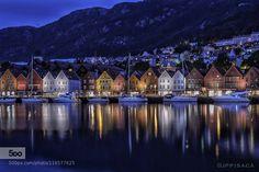 Bergen Noche 2015