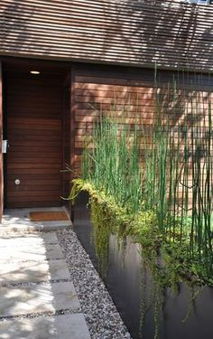 long planter, modern (wood slats, rocks concrete)