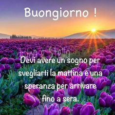 Le migliori immagini di amore, immagini romantiche, le foto, l'amore, le immagini WhatsApp per le immagini sarcasmo facebook e frasi di sarcasmo Happy Day, Smiley, Minions, Good Morning, In This Moment, World, Movie Posters, Life, Genere