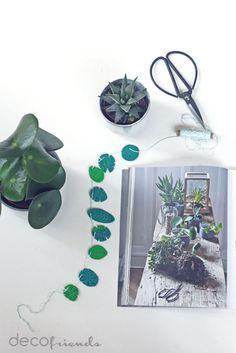 decofriends: Comeback der Zimmerpflanzen