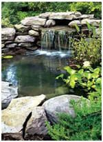 Free Water Garden and Koi Pond Building Guides and Project Plans - Build a beautiful pond in your backyard with these free how-to guides and do-it-yourself plans. Photo: This illustrated article from PopularMechanics.com will show you how to build your own pond.