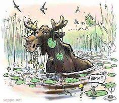 Hirvi syö ulpukanjuurakoita, keywords:  Villiä elämää luonto-opas eräopas hirvi hippi sammakko ulpukka Hippi, Finland, Fun Stuff, Moose Art, Inspirational, Nature, Animals, Fun Things, Naturaleza