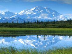 Denali National Park | Denali National Park, AK Restaurant Guide - Menus and Reviews ...