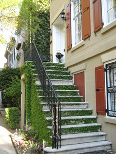 I've always loved ivy covered walls, but have never seen ivy covered stairs!  Love the orange shutters with it too.