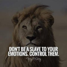 Positive Quotes : Don't be slave to your emotions control them. Positive Quotes : Don't be slave to your emotions control them. Positive Quotes : Don't be slave to your emotions control them. Motivational Quotes For Depression, Great Inspirational Quotes, Motivational Quotes For Success, Positive Quotes, Quotes Motivation, Good Happy Quotes, Lion Quotes, Quotes With Lions, Quotes About Lions