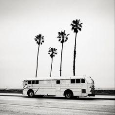 The buss