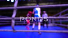 Boxers box in the ring. Out of focus. Out Of Focus, Video Footage, Glove, Boxing, Athlete, Competition, Battle, Champion, Strength