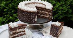 Kókuszos-étcsokis torta