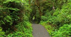 Excellent list of Vancouver Island hiking trails
