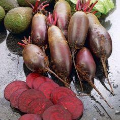 Beetroot Cylindra Seeds - Irish Plants Direct