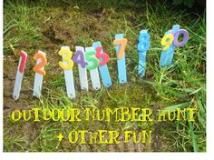 We're going on a number hunt... fun nature walk, and could then have kids put them in order