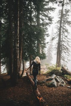 forest, nature, and girl εικόνα