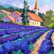 Lavender Field In St. Columne Art Print