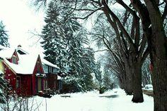 Garneau, Edmonton People Around The World, Around The Worlds, Past Tense, O Canada, Snow And Ice, Alma Mater, Growing Flowers, Winter Wonderland, Enchanted