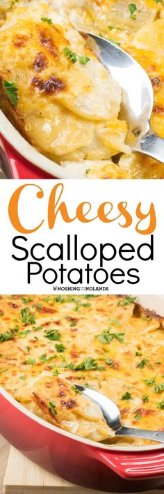 Cheesy Scalloped Potatoes via @tnoland