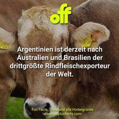 25 unglaubliche Fakten über Argentinien - Einfach unfassbar - Only Fun Facts